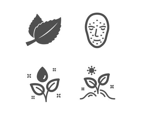 Set of Face biometrics, Plants watering and Mint leaves icons. Grow plant sign. Facial recognition, Water drop, Mentha herbal. Leaves.  Classic design face biometrics icon. Flat design. Vector Çizim