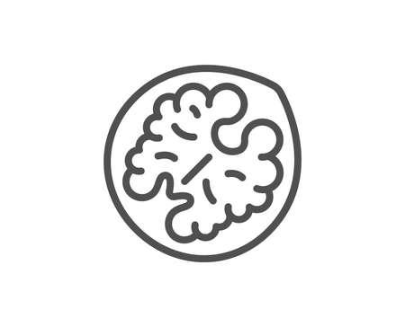 Walnut line icon. Tasty nut sign. Vegan food symbol. Quality design element. Linear style walnut icon. Editable stroke. Vector Illustration