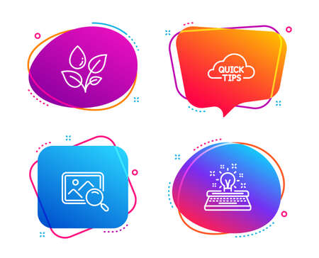 Quick tips, Search photo and Plants watering icons simple set. Typewriter sign. Helpful tricks, Find image, Water drop. Inspiration. Business set. Speech bubble quick tips icon. Vector