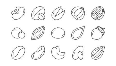Icone della linea di noci e semi. Nocciola, Mandorla Noce e Arachidi. Noce, noce del Brasile, icone al pistacchio. Cacao e anacardi. Insieme lineare. Vettore Vettoriali