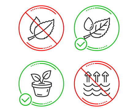 Do or Stop. Mint leaves, Leaves and Leaf dew icons simple set. Evaporation sign. Mentha herbal, Grow plant, Water drop. Global warming. Nature set. Line mint leaves do icon. Prohibited ban stop Çizim