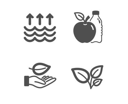 Set of Leaf, Apple and Evaporation icons. Leaves sign. Plant care, Diet food, Global warming. Grow plant.  Classic design leaf icon. Flat design. Vector Illustration