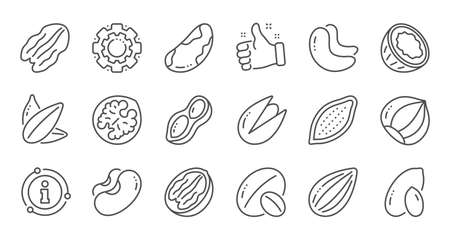 Nuts and seeds line icons. Hazelnut, Almond nut and Peanut. Sunflower seeds, Brazil nut, Pistachio icons. Walnut, Coconut and Cashew nuts. Linear set. Quality line set. Vector Archivio Fotografico - 127879185