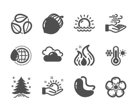 Set of Nature icons, such as World water, Fire energy, Cloudy weather, Thermometer, Leaves, Sunset, Christmas tree, Natural linen, Wind energy, Cashew nut, Acorn, Sunny weather. Vector