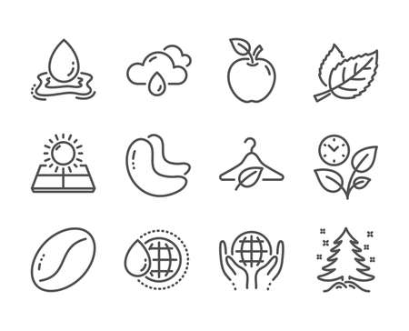 Set of Nature icons, such as Christmas tree, Apple, Cashew nut, Organic tested, Sun energy, Coffee beans, Leaves, World water, Water splash, Leaf, Rainy weather, Slow fashion line icons. Vector