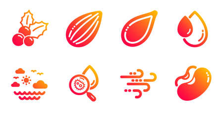 Water analysis, Travel sea and Windy weather line icons set. Oil drop, Christmas holly and Pumpkin seed signs. Almond nut, Beans symbols. Aqua bacteria, Summer holidays. Nature set. Vector