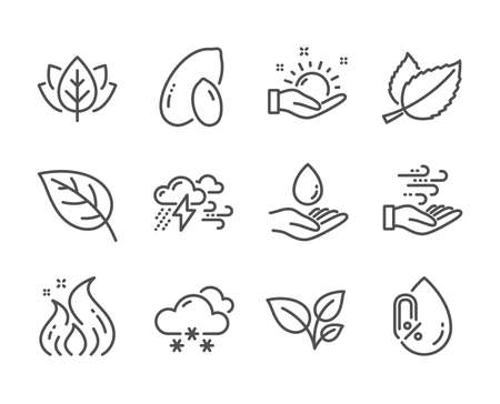 Set of Nature icons, such as Peanut, Leaves, Organic tested, Water care, Mint leaves, Wind energy, Bad weather, No alcohol, Sunny weather, Leaf, Fire energy line icons. Peanut icon. Vector Çizim