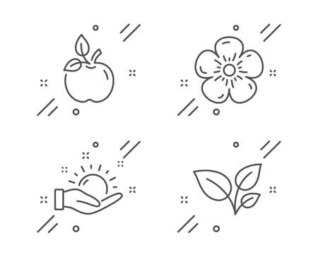 Sunny weather, Natural linen and Eco food line icons set
