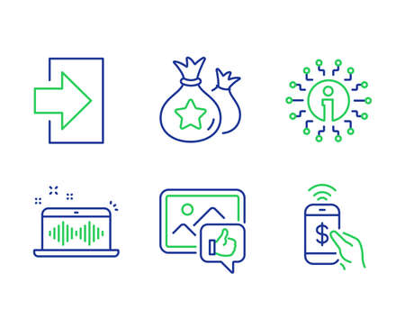 Like photo, Info and Loyalty points line icons set. Music making, Login and Phone payment signs. Thumbs up, Information, Money bags. Dj app. Technology set. Line like photo outline icons. Vector