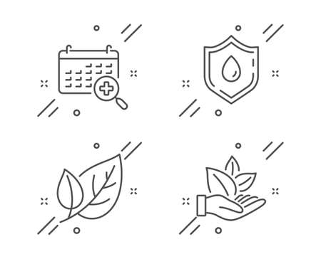 Medical calendar, Blood donation and Leaf line icons set. Organic product sign. Doctor appointment, Medicine analyze, Ecology. Leaf. Healthcare set. Line medical calendar outline icon. Vector