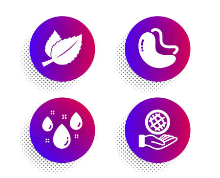 Mint leaves, Cashew nut and Rainy weather icons simple set. Halftone dots button. Safe planet sign. Mentha herbal, Vegetarian food, Water drop. Ecology. Nature set. Vector