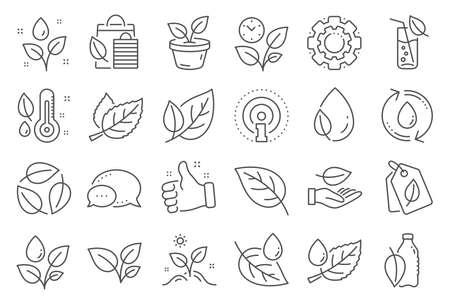 Pflanzensymbole. Minzblatt, wachsende Pflanzen und Feuchtigkeitsthermometer-Symbole. Flasche mit Minzwasser, Naturpflege, Blatt zur Hand. Gartenarbeit neue Blume, Umwelt, Wassertropfen und Thermometer. Vektor