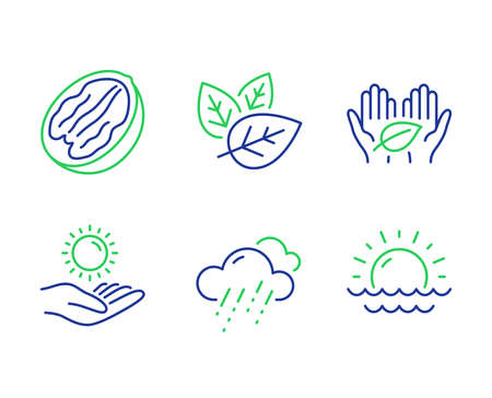 Fair trade, Rainy weather and Sun protection line icons set. Pecan nut, Organic tested and Sunset signs. Safe nature, Rain, Ultraviolet care. Vegetarian food. Nature set. Vector Çizim