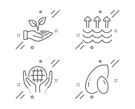 Organic tested, Helping hand and Evaporation line icons set. Peanut sign. Safe nature, Startup palm, Global warming. Vegetarian nut. Nature set. Line organic tested outline icon. Vector
