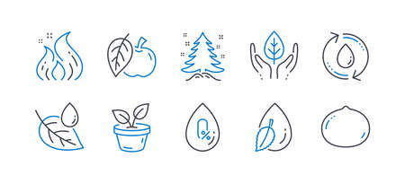 Set of Nature icons, such as Apple, Christmas tree, Fire energy, Leaves, No alcohol, Fair trade, Water drop, Refill water, Leaf dew, Macadamia nut line icons. Fruit, Spruce. Line apple icon. Vector Illustration