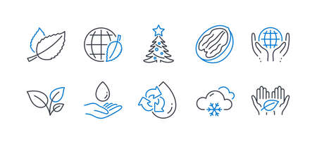 Set of Nature icons, such as Snow weather, Recycle water, Organic tested, Pecan nut, Mint leaves, Water care, Leaves, Environment day, Christmas tree, Fair trade line icons. Vector Banque d'images - 131047906
