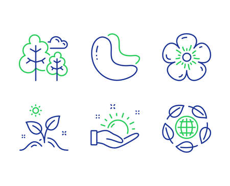 Tree, Sunny weather and Natural linen line icons set. Grow plant, Cashew nut and Eco organic signs. Forest plants, Hold sun, Organic tested. Leaves. Nature set. Line tree outline icons. Vector