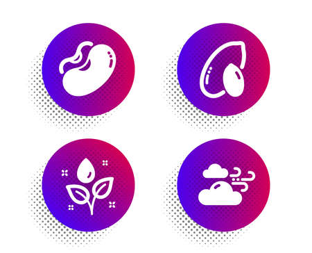 Plants watering, Peanut and Beans icons simple set. Halftone dots button. Windy weather sign. Water drop, Vegetarian nut, Vegetarian seed. Cloud wind. Nature set. Vector