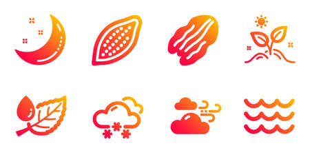 Windy weather, Cocoa nut and Pecan nut line icons set. Moon stars, Snow weather and Grow plant signs. Leaf dew, Waves symbols. Cloud wind, Vegetarian food. Nature set. Vector 向量圖像