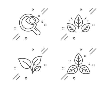Leaves, Organic tested and Vision test line icons set. Fair trade sign. Grow plant, Bio ingredients, Eyesight check. Leaf. Healthcare set. Line leaves outline icon. Vector 向量圖像