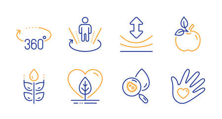 Local grown, Gluten free and Resilience line icons set. Eco food, Augmented reality and 360 degrees signs. Water analysis, Social responsibility symbols. Organic tested, Bio ingredients. Vector