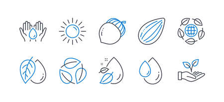 Set of Nature icons, such as Mineral oil, Sun, Almond nut, Water drop, Leaves, Oil drop, Safe water, Acorn, Eco organic, Helping hand line icons. Organic tested, Summer. Line mineral oil icon. Vector Vettoriali