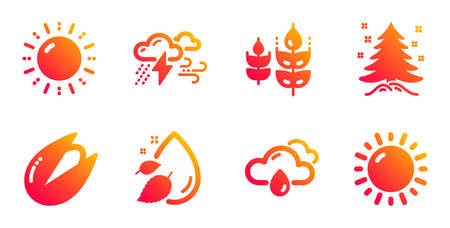 Sun energy, Bad weather and Rainy weather line icons set. Pistachio nut, Christmas tree and Water drop signs. Gluten free symbol. Solar power, Clouds. Nature set. Gradient sun energy icons set. Vector Illustration