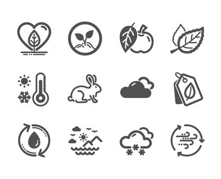 Set of Nature icons, such as Snow weather, Wind energy, Bio tags, Weather thermometer, Leaf, Animal tested, Apple, Startup, Refill water, Local grown, Sea mountains classic icons. Vector