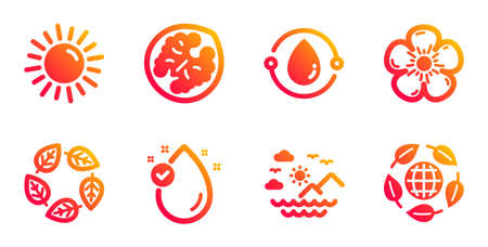 Sun, Natural linen and Cold-pressed oil line icons set. Organic tested, Walnut and Vitamin e signs. Sea mountains, Eco organic symbols. Summer, Bio ingredients. Nature set. Vector