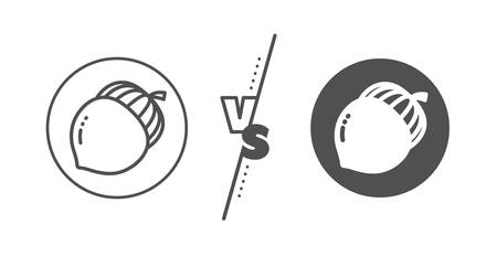 Oaknut sign. Versus concept. Acorn nut line icon. Oak tree seed symbol. Line vs classic acorn icon. Vector Illustration