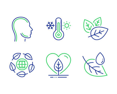 Eco organic, Organic tested and Head line icons set. Local grown, Thermometer and Leaf dew signs. Bio ingredients, Human profile, Thermostat. Water drop. Healthcare set. Vector Illustration