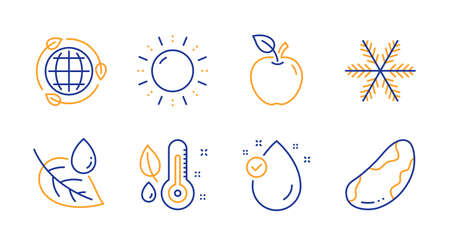 Snowflake, Sun energy and Thermometer line icons set. Apple, Eco energy and Vitamin e signs. Leaf dew, Brazil nut symbols. Air conditioning, Solar power. Nature set. Line snowflake icon. Vector