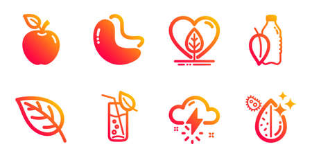 Water glass, Thunderstorm weather and Cashew nut line icons set. Leaf, Local grown and Water bottle signs. Apple symbol. Soda drink, Thunder bolt. Nature set. Gradient water glass icons set. Vector
