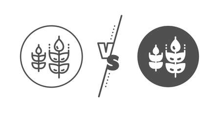 Organic tested sign. Versus concept. Gluten free line icon. Natural product symbol. Line vs classic gluten free icon. Vector