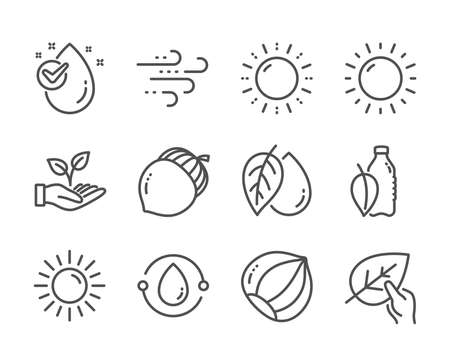 Set of Nature icons, such as Water drop, Windy weather, Water bottle, Organic tested, Acorn, Cold-pressed oil, Helping hand, Mineral oil, Sun, Hazelnut, Sunny weather, Sun energy. Vector Çizim