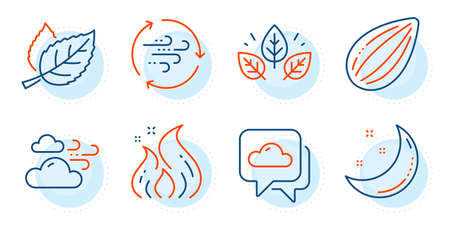 Windy weather, Almond nut and Moon stars signs. Weather forecast, Fire energy and Leaf line icons set. Wind energy, Organic tested symbols. Cloudy, Flame. Nature set. Outline icons set. Vector