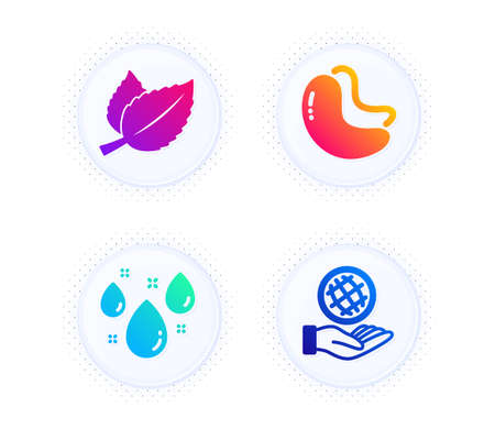 Mint leaves, Cashew nut and Rainy weather icons simple set. Button with halftone dots. Safe planet sign. Mentha herbal, Vegetarian food, Water drop. Ecology. Nature set. Vector