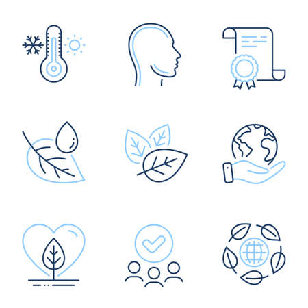 Eco organic, Organic tested and Head line icons set. Diploma certificate, save planet, group of people. Local grown, Thermometer and Leaf dew signs. Bio ingredients, Human profile, Thermostat. Vector