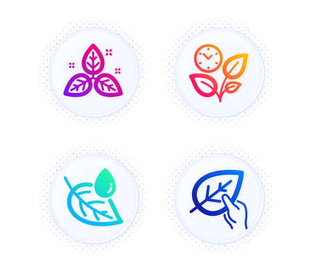 Leaf dew, Fair trade and Leaves icons simple set. Button with halftone dots. Organic tested sign. Water drop, Leaf, Grow plant. Paraben. Healthcare set. Gradient flat leaf dew icon. Vector