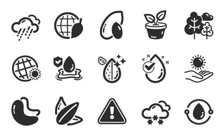 Snow weather, Cashew nut and Leaves icons simple set. Peanut, Cold-pressed oil and Water drop signs. Sunflower seed, Flood insurance and Dirty water symbols. Flat icons set. Vector