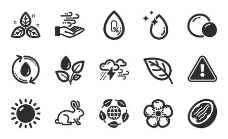 Animal tested, Sunny weather and Bad weather icons simple set. No alcohol, Eco organic and Wind energy signs. Pecan nut, Water drop and Fair trade symbols. Peas, Refill water and Leaf. Vector Vettoriali