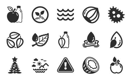 Waves, Apple and Startup icons simple set. Water drop, Sea mountains and Water splash signs. Leaf dew, Hazelnut and Christmas tree symbols. Bacteria, Coconut and Leaves. Eco food. Vector