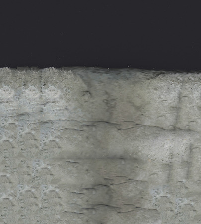 moldy bread texture background unit isolate