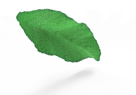 leaf 3D isolate background