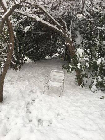 outdoors snow isolate background