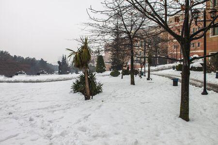 outdoors snow isolate background Stok Fotoğraf - 132405336