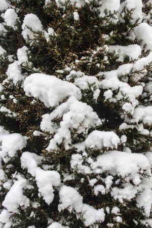 outdoors snow isolate background Stok Fotoğraf - 132405353