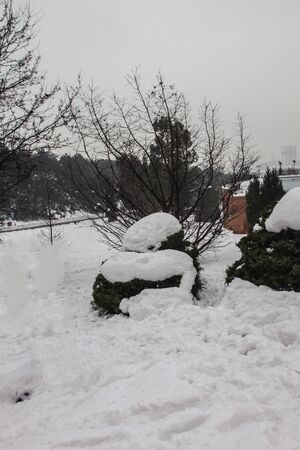 outdoors snow isolate background Stok Fotoğraf - 132405385