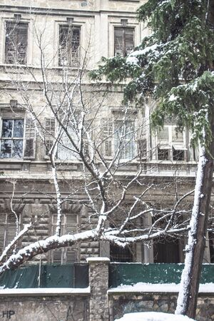 outdoors snow isolate background Stok Fotoğraf - 132405086