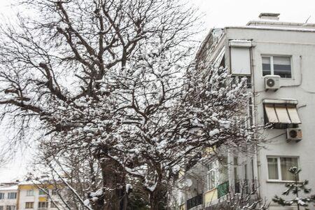 outdoors snow isolate background Stok Fotoğraf - 132405091